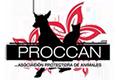 PROCCAN